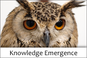 Knowledge Emergence